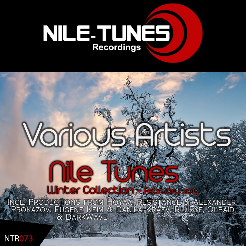 Various Artists - Nile Tunes Winter Collection (February 2014)