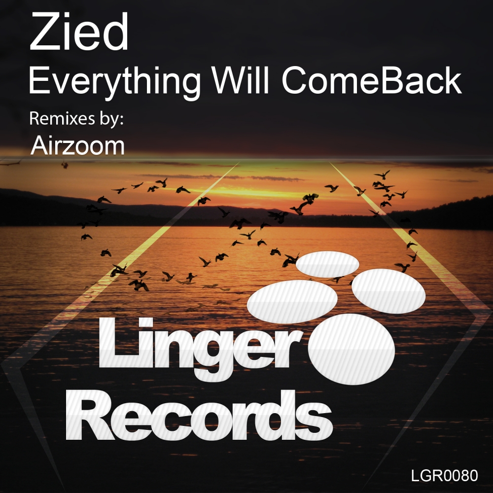 Zied - Everything Will Come Back