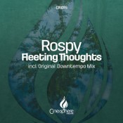 Rospy - Fleeting Thoughts (Original Downtempo Mix)