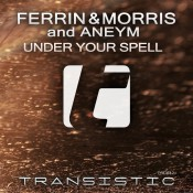 Ferrin & Morris and Aneym - Under Your Spell