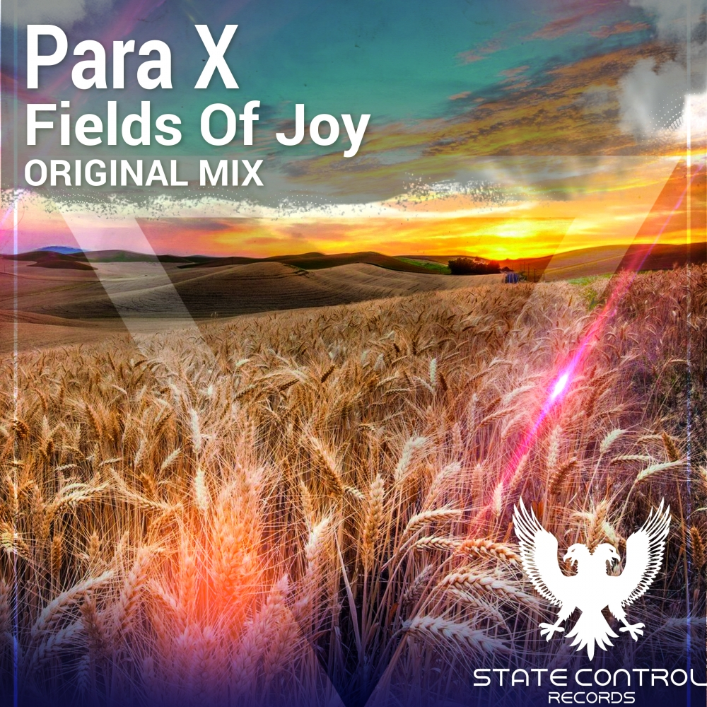Para X - Fields Of Joy