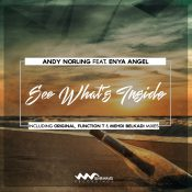 Andy Norling feat. Enya Angel - See What's Inside