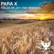 Para X - Fields Of Joy (The Remixes)