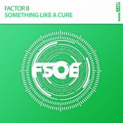 Factor B - Something Like A Cure